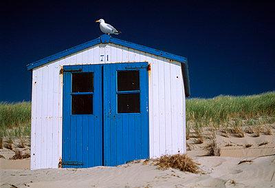 Coastal - p2680180 by M. Klippel