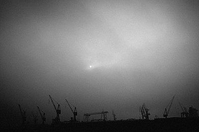 Kräne am Hamburger Hafen im Nebel - p1579m2193159 von Alexander Ziegler