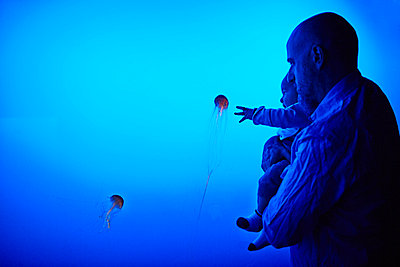 Father and son watching jellyfish at aquarium - p429m802509 by Cultura