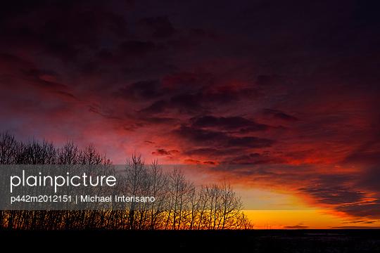 p442m2012151 von Michael Interisano