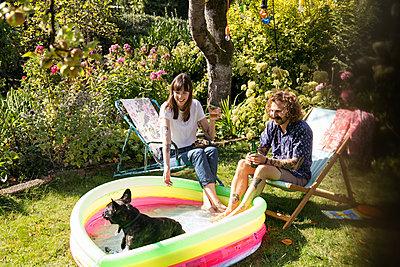 Dog in paddling pool - p788m2037415 by Lisa Krechting