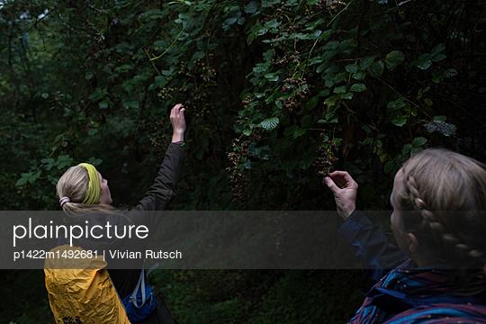 Junge Frauen beim Beeren pflücken - p1422m1492681 von Vivian Rutsch