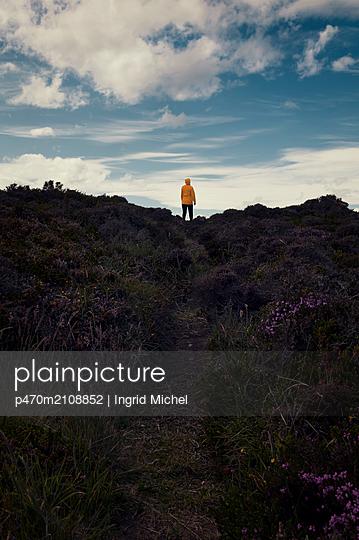 Woman in heathland - p470m2108852 by Ingrid Michel
