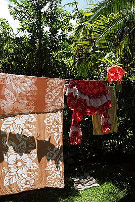 Wäscheleine im Garten - p0452968 von Jasmin Sander