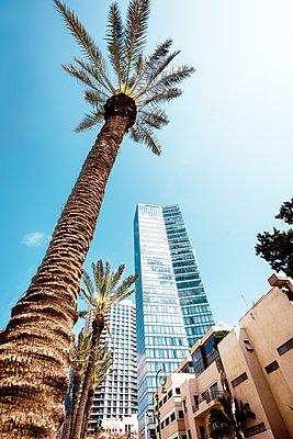 Tel Aviv - p416m1497981 von Jörg Dickmann Photography