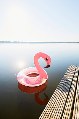 Flamingo - p464m2196605 von Elektrons 08