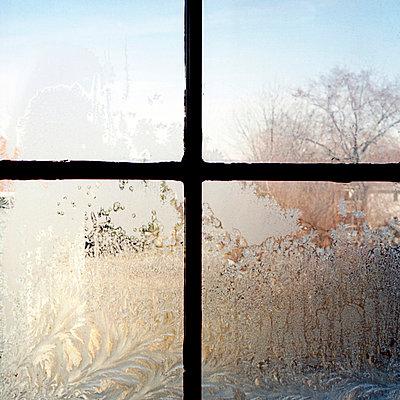 Vereistes Sprossenfenster - p6460033 von gio