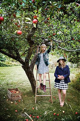 Girls picking apples - p312m2092016 by Anna Kern