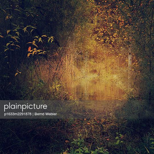 Autumn Fires - p1633m2291878 by Bernd Webler