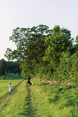 A young family and their dog on a nature walk. - p1166m2151859 by Cavan Images