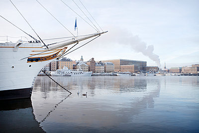 Moored ship with city on background - p312m1192838 by Maria Rosenlof