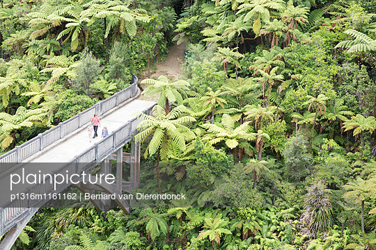 The Bridge to Nowhere. Kanu Trekking auf dem Whanganui River, North Island, Neuseeland - p1316m1161162 von Bernard van Dierendonck