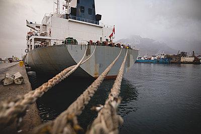 Cargo ships moored in the dockyards - p1315m1578997 by Wavebreak