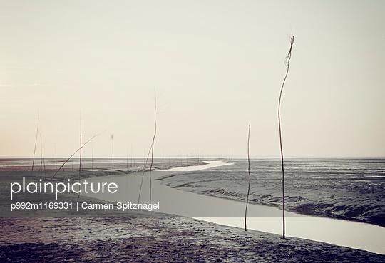 Pricken - p992m1169331 von Carmen Spitznagel