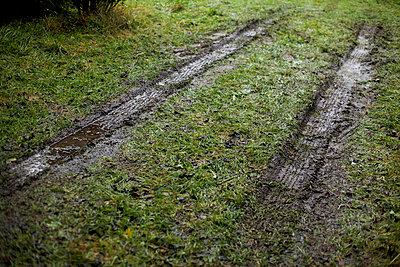 Traktorspuren - p5861417 von Kniel Synnatzschke