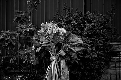Boy with rhubarb - p1169m955979 by Tytia Habing