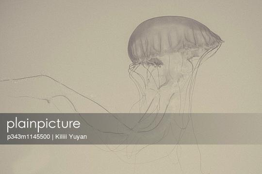 p343m1145500 von Kiliii Yuyan