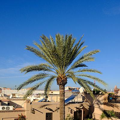 Old town in marrakesh - p1105m2043590 by Virginie Plauchut