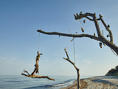 Kunst aus Strandgut - p1200m1131742 von Carsten Görling