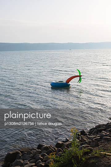 Swimming ring with a palm - p1308m2126756 by felice douglas