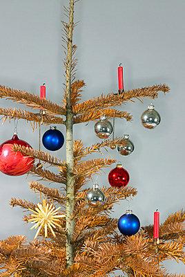 Verwelkter Weihnachtsbaum - p5090110 von Reiner Ohms