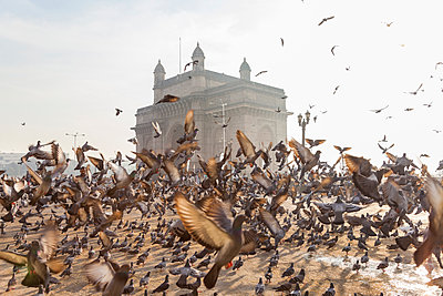 Large flock of pigeons on open space with arch monument in background. - p1100m1520395 by Mint Images