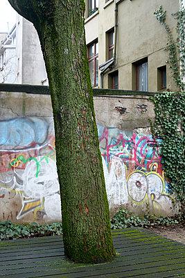 Baum und Bank - p1164m1120322 von Uwe Schinkel