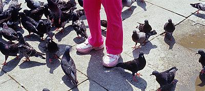 Kind und Tauben - p3210239 von Thorsten Rother