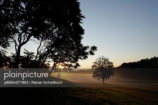 p855m971863 von Rainer Schoditsch