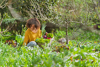 Woman picking fresh organic vegetables in sustainable permaculture garden - p300m2267350 by Steve Brookland