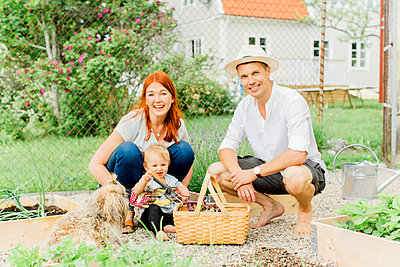 Parents with baby boy working in garden - p312m2050003 by Alicia Swedenborg