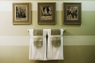 Detail of Bathroom Towel Rack and Photographs - p5552082f by Lived In Images