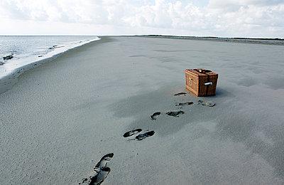 Seehundauswilderung - p1221m1025745 von Frank Lothar Lange