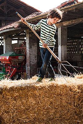 Boy on straw bale with pitchfork on organic dairy farm - p924m1446868 by Bonfanti Diego