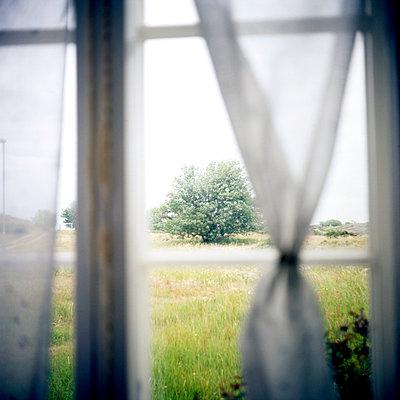 Curtains - p1269m1113122 by Sari Poijärvi
