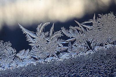 Eisblumen am Fenster - p235m904264 von KuS