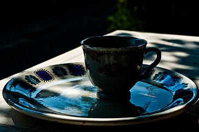 Coffee cup and plate in a garden - p3314094 by Anna Fabroni