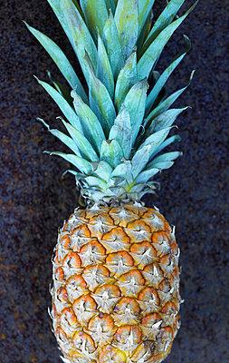 Ananas - p5090062 von Reiner Ohms