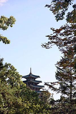 Tempel in Seoul - p664m891727 von Yom Lam