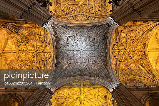 Domed structure, ceilling construction, cathedral, Sevilla, Spain - p1332m2203264 by Tamboly
