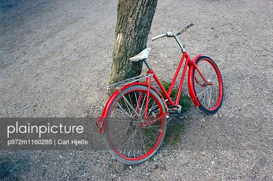 Rotes Fahrrad an einem Baum - p972m1160285 von Carl Hjelte