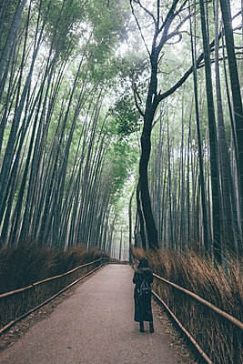 High angle view of woman standing on road amidst bamboo grove during rainfall - p1166m1509828 by Cavan Images