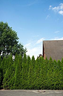 Haus hinter der Hecke - p229m919620 von Martin Langer