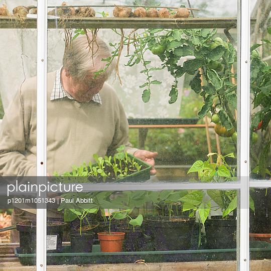 Mann in seinem Garten - p1201m1051343 von Paul Abbitt