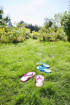 Sommer im Garten - p464m1496662 von Elektrons 08