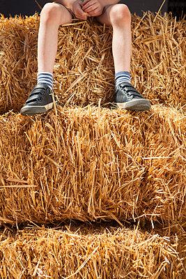 Junge sitzt auf Strohballen - p045m1445940 von Jasmin Sander