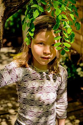 Tree canopy - p1212m1145968 by harry + lidy
