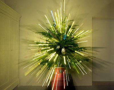 Prächtiger Weihnachtsbaum - p1231m2161043 von Iris Loonen
