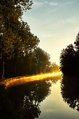 River with forest haze and sun - p1312m2263123 by Axel Killian