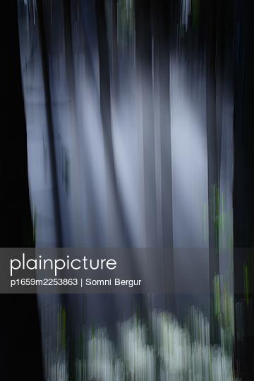 Magic forest - p1659m2253863 by Somni Bergur
